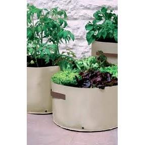 planter060101