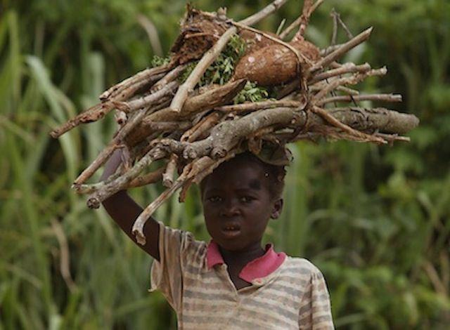 child-labor-cocoa-farm_s640x470
